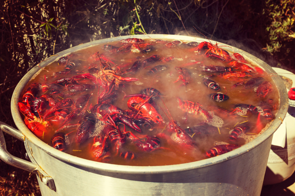 Photo Story: Southern Style Crawfish in Hollywood