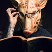 todd_pig